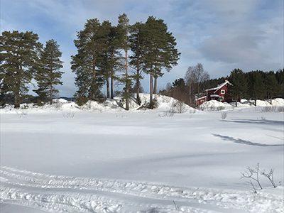 Vinter Torgåsgården