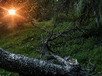 Solnedgång Dalarna