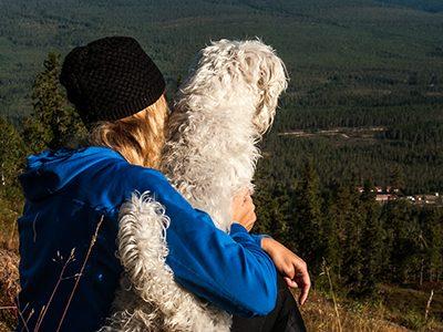Utsikt Hund